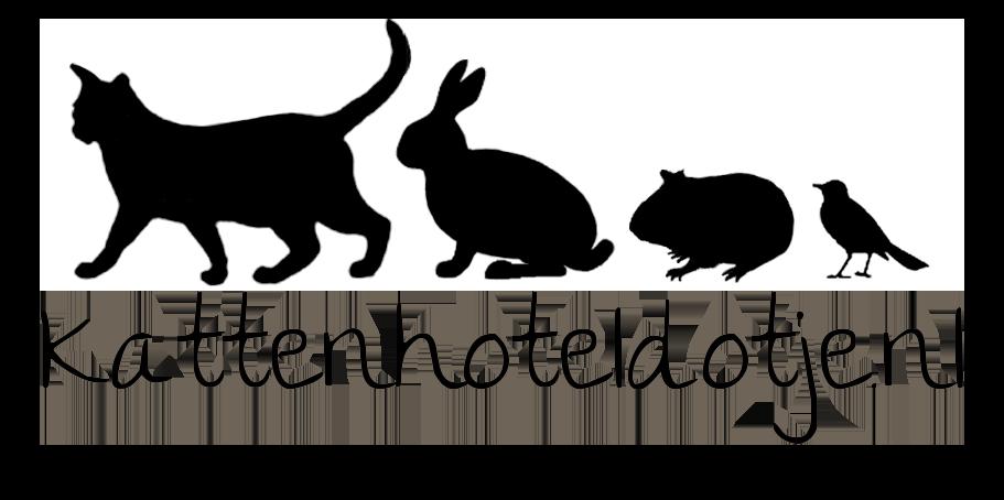Kattenhotel Dotje, pension voor huisdieren